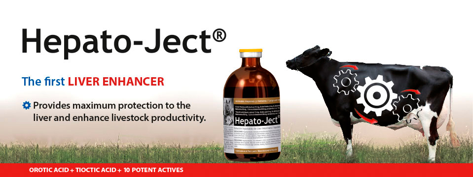 Hepato-Ject
