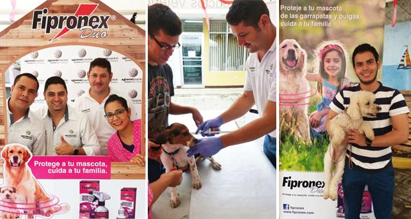 Successful collaboration of Agrovet Market and its partner UNIVETSA in organizing the Fipronex Duo Day