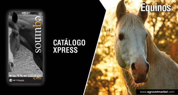 Xpress Catalogue - Equine