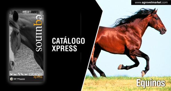 Xpress Catalogue -- Equine
