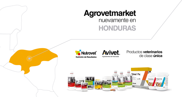 Line of Poultry and Swine of Agrovet Market Animal Health now in Honduras