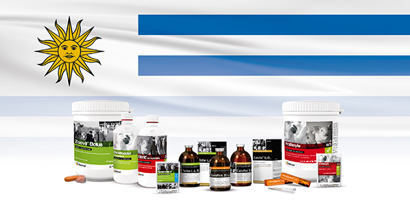 Agrovet Market expands product portfolio in Uruguay