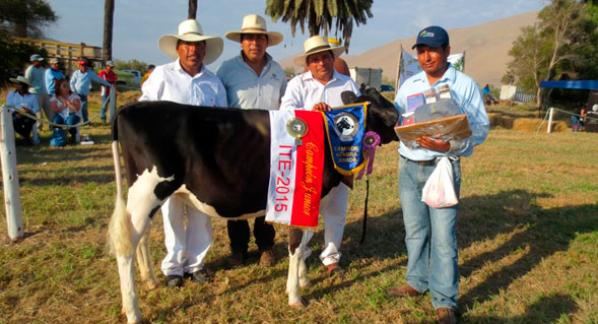 Agrovet Market was sponsor of the successful I Expo Ternera Jorge Basadre 2015