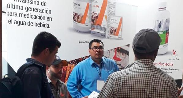 Avivet presente en el Congreso Internacional AVEM 2019