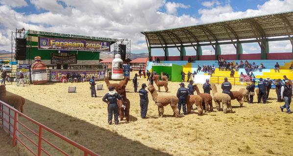 Agrovet Market presente en la Feria Nacional FECASAM 2019