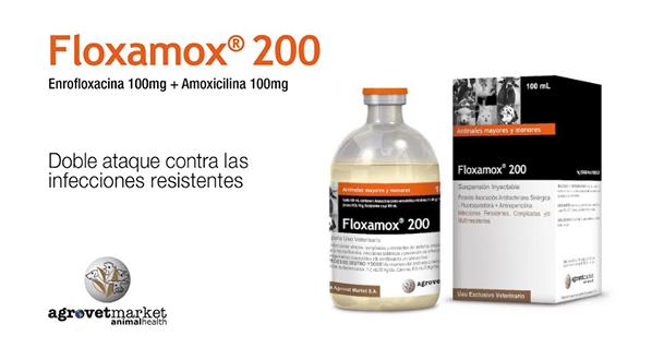 Floxamox® 200, Doble Ataque contra las Infecciones Resistentes