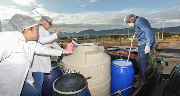 La SADER destinará mayor presupuesto a los pequeños productores en 2020