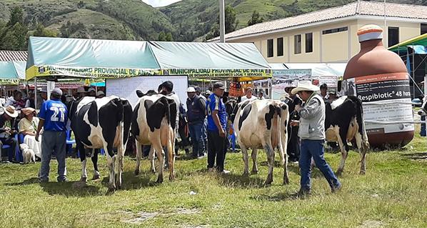 """Agrovet Market presente en el """"XVIII festival de la leche – Compone 2020"""""""