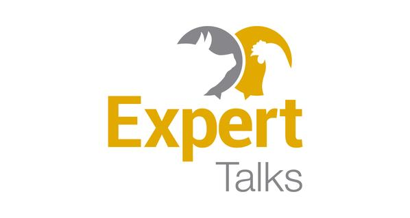 SEGUNDO CICLO DE CONFERENCIAS EXPERT TALKS 2021