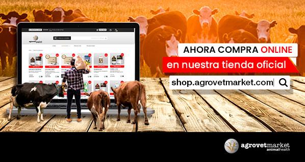 Agrovet Market acerca su portafolio a los veterinarios y productores del Perú