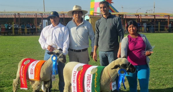 Agrovet Market was present in trade fair promoting the dairy activity in Tacna