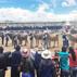 Agrovet Market presente en la IV Feria Expo Internacional de Reyes - Espinar 2016