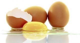Dia mundial del huevo 2014