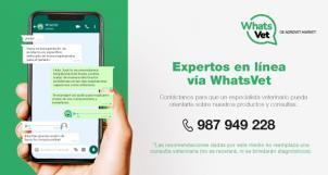 WhatsVet de Agrovet Market, en línea directa  con  las consultas de nuestros clientes