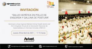 "Avivet® will be at ""XLV Congreso Anual ANECA"""