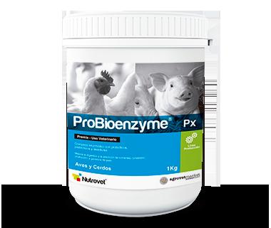 Probioenzyme® Px