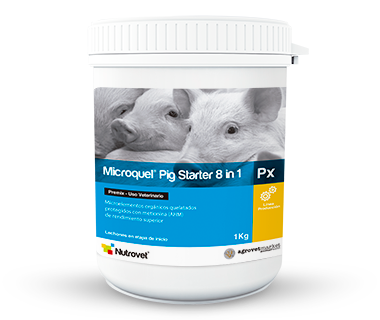 Microquel® Pig Starter 8 in 1 Px