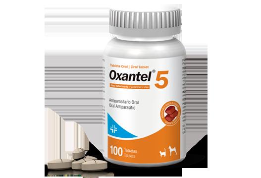 Oxantel® 5 internal antiparasitic