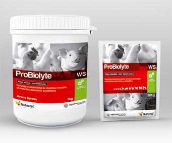 Probiolyte® WS