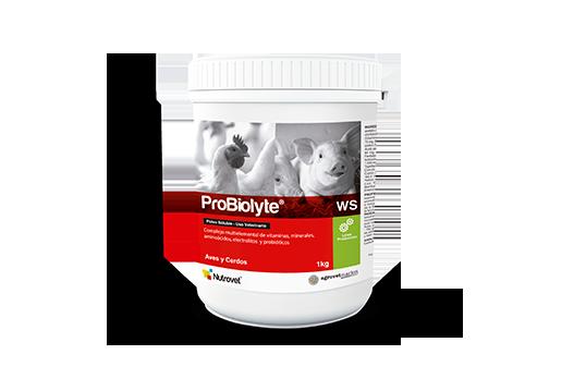 Los probióticos en la nutrición porcina: alternativa sostenible y viable de sanidad, inocuidad y producción.