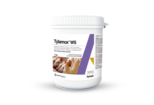 Tylamox® WS broad-spectrum macrolide beta-lactam synergic-additive antibiotic association