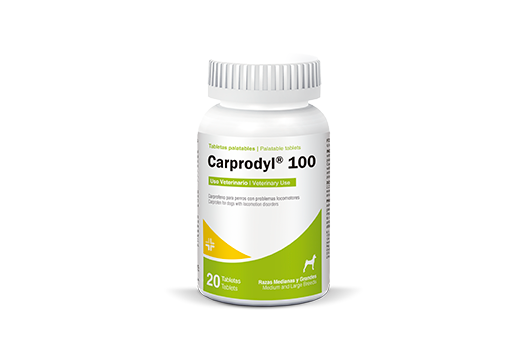 Carprodyl® 100 non-steroidal anti-inflamatory for medium and large dogs