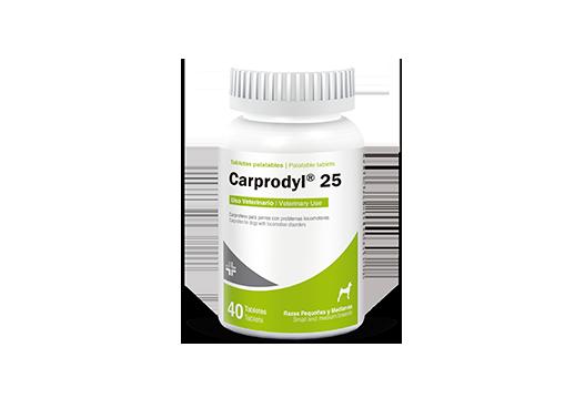Carprodyl® 25 antiinflamatorio no esteroidal para perros pequeños y medianos