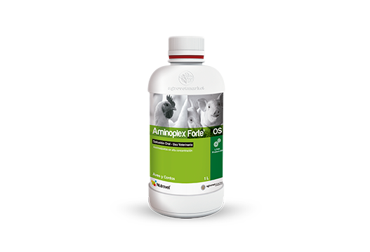 Aminoplex® Forte OS nutritional supplement with amino acids in high concentration.