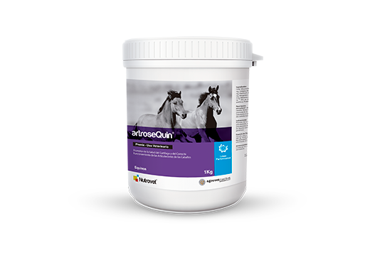 Artrosequin® promoter of cartilage health and adequate functioning of equine joints