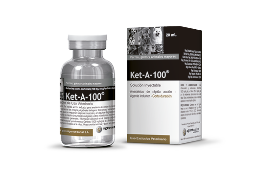 Combinación Xilacina, Tramadol, Diazepam y Ketamina como Protocolo Anestésico para Ovariohisterectomía Canina en Campañas de Esterilización y sus Efectos en las Constantes Vitales