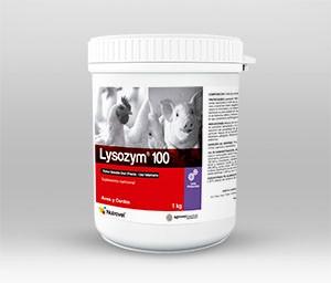 Lysozym®100