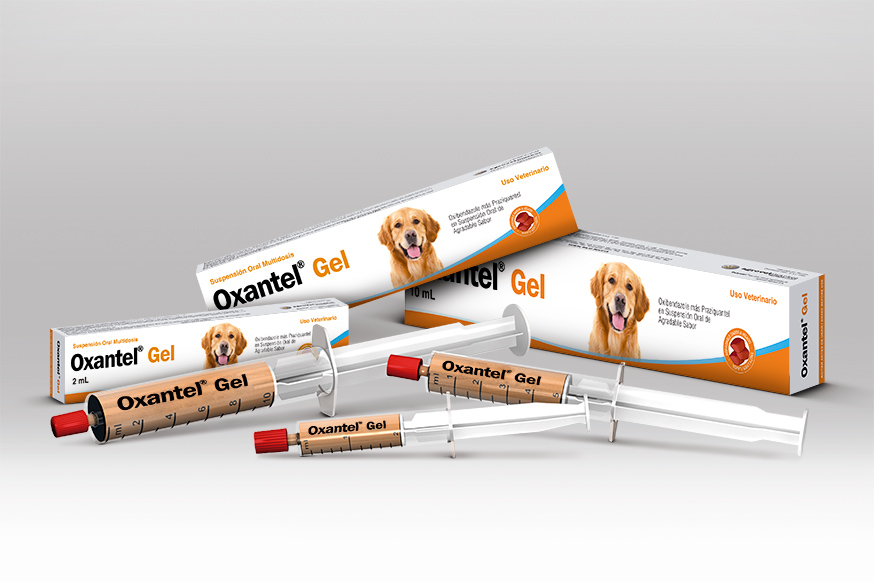 Oxibendazole Dosage Cats And Dogs Mg Kg