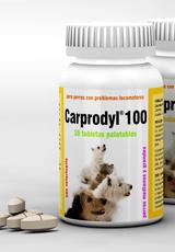 Carprodyl® 100