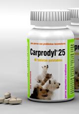 Carprodyl® 25