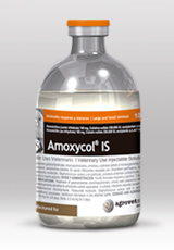 Amoxycol® IS